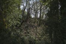 Castelo de Grobas